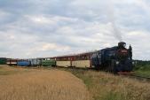 Příjezd výletního vlaku doSlezských Rudoltic