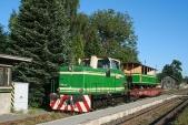 Rosnička sezeleným výletním vozem představědlem stanice Třemešná veSlezsku