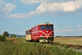 TéÚčko 705913 přijíždí doSlezských Rudoltic vneděli 22.8.2010