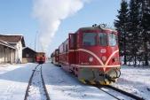 Křižování zvláštního vlaku SZD spravidelným vlakem ČD vLiptani