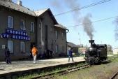 Gontkulák unástupiště stanice Třemešná veSlezsku