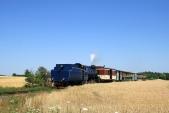 Parní vlak přijíždí dozastávky Amalín