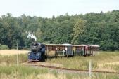 Výletní parní vlak Slezských zemských drah stoupá v srpnovém odpoledni do Slezských Rudoltic, 25.8.2013