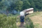 Parní lokomotiva U57.001 sjíždí největší klesání na trati k mostu v obci Třemešná. Poté ji čeká poslední kopec do své cílové stanice, 25.8.2013
