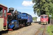 Křižování ve stanici Třemešná ve Slezsku. Na kolej 1u přijel vlak ČD 20606 s lokomotivou 705 913, na koleji 2u je připraven k odjezdu vlak SZD 20651 s parní lokomotivou U57.001