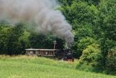 Parní lokomotiva U46.002 stoupá z Koberna do Slezských Rudoltic a projíždí okolo jednoho z mála zapomenutých telegrafních sloupů na trati.
