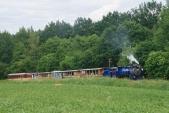 Dunící parní lokomotiva vyplašila srnku schovávající se v trávě u trati pod Slezskými Rudolticemi