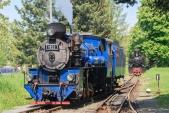 Posun parních lokomotiv v Osoblaze.