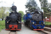 Posun v Osoblaze s parními lokomotivami Rešica a Malý štokr.