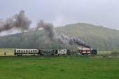 Sobotní zvláštní parní vlak s U46.002 v náročném stoupání mezi Třemešnou a Liptaní.