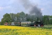 Okolo řepkového pole stoupá parní vlak do Slezských Rudoltic.