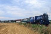 Parní vlak s Malým Štokrem a Faurem vjíždí do Slezkých Rudoltic