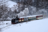 Mikulášský parní vlak v čele s Rešicou sjíždí k nejmenšímu oblouku na trati na své cestě do Osoblahy.