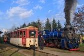 Dva křižující parní vlaky v Liptani.