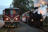 Poslední parní vlak v čele s Rešicou dorazil do Třemešné a byl dostižen osobním vlakem v čele s 705 913. První den oslav je téměř u konce.
