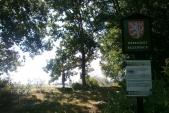 PR Velký Pavlovický rybník. Na hrázi rostou duby letní, vrby i olše
