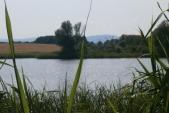 Klidná hladina Pavlovického rybníka je jako pohlazení duše